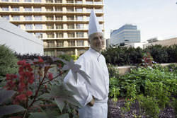 Chef Foster at the Fairmont