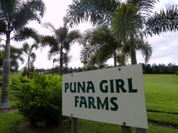 Puna Girl Farms sign