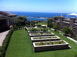 Studio garden at Montage Laguna Beach