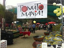 Tomatomania 2012